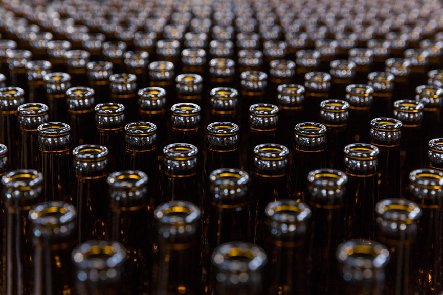 The Science Of Aging: Beer, Human Blood, & Biology