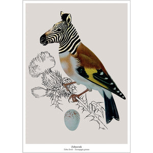New Species prints - 9 varianten