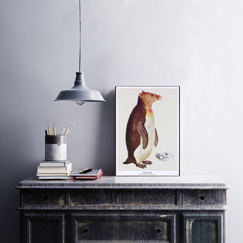 Print op hout - Keizerswallaby