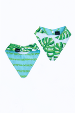 Load image into Gallery viewer, reversible monstera palm print dog bandana