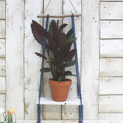 Macrame Dark Blue Shelf