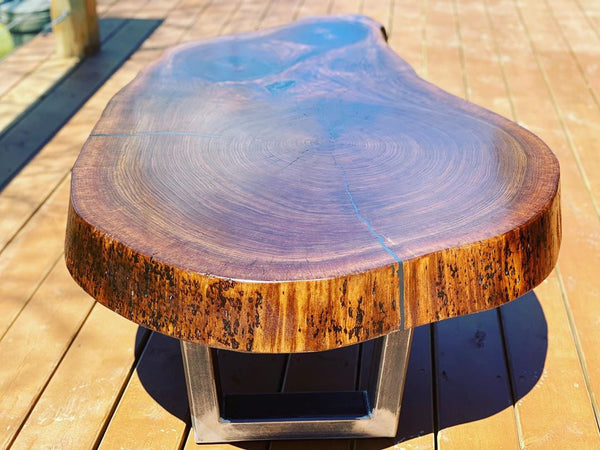 "6"" Thick 120+ Year Old Black Walnut Cookie Coffee Table"