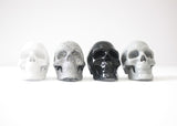 Skull Magnet Set (4pcs)