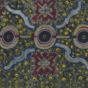 A swatch of fabric called Dreamtime Knowledge by Australian Indigenous artist Trephona Sultan