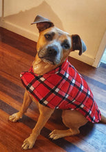 Load image into Gallery viewer, Harley is wearing her 90% wool dog coat. keeping warm and cosy in the cold winter temperatures. Featuring blanket style wool in red check and lined with 100% cotton.