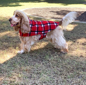 Wool Dog Coat
