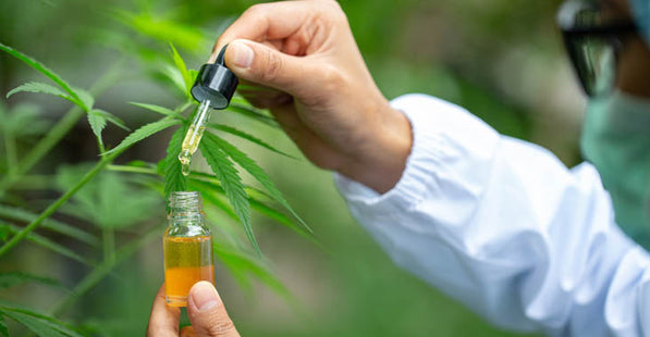 CBD Has Beneficial Effects In Wide Range of Disorders