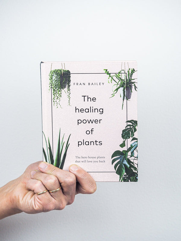 The healing power of plants - Plantredo