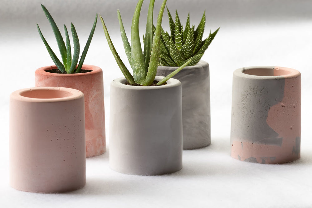 Concrete Succulent Planters - Set of 4