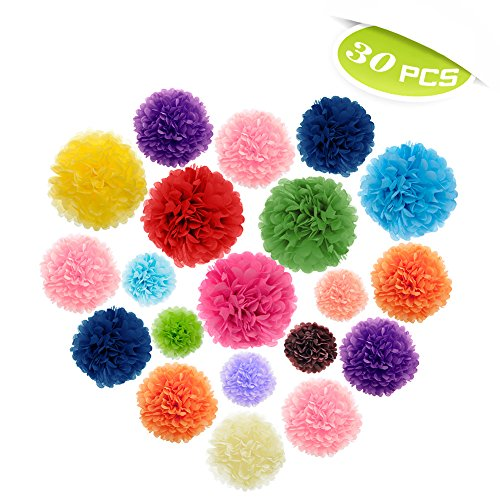 (Price/30 Pcs)Aspire 30 Pcs Mixed Tissue Paper Pom Poms Wedding Party Outdoor Decoration Tissue Paper Craft Kit