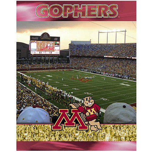 Racing Reflections Minnesota Golden Gophers 500 Piece Puzzle Set 16 X 20