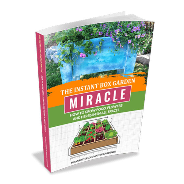 Instant Box Miracle Garden