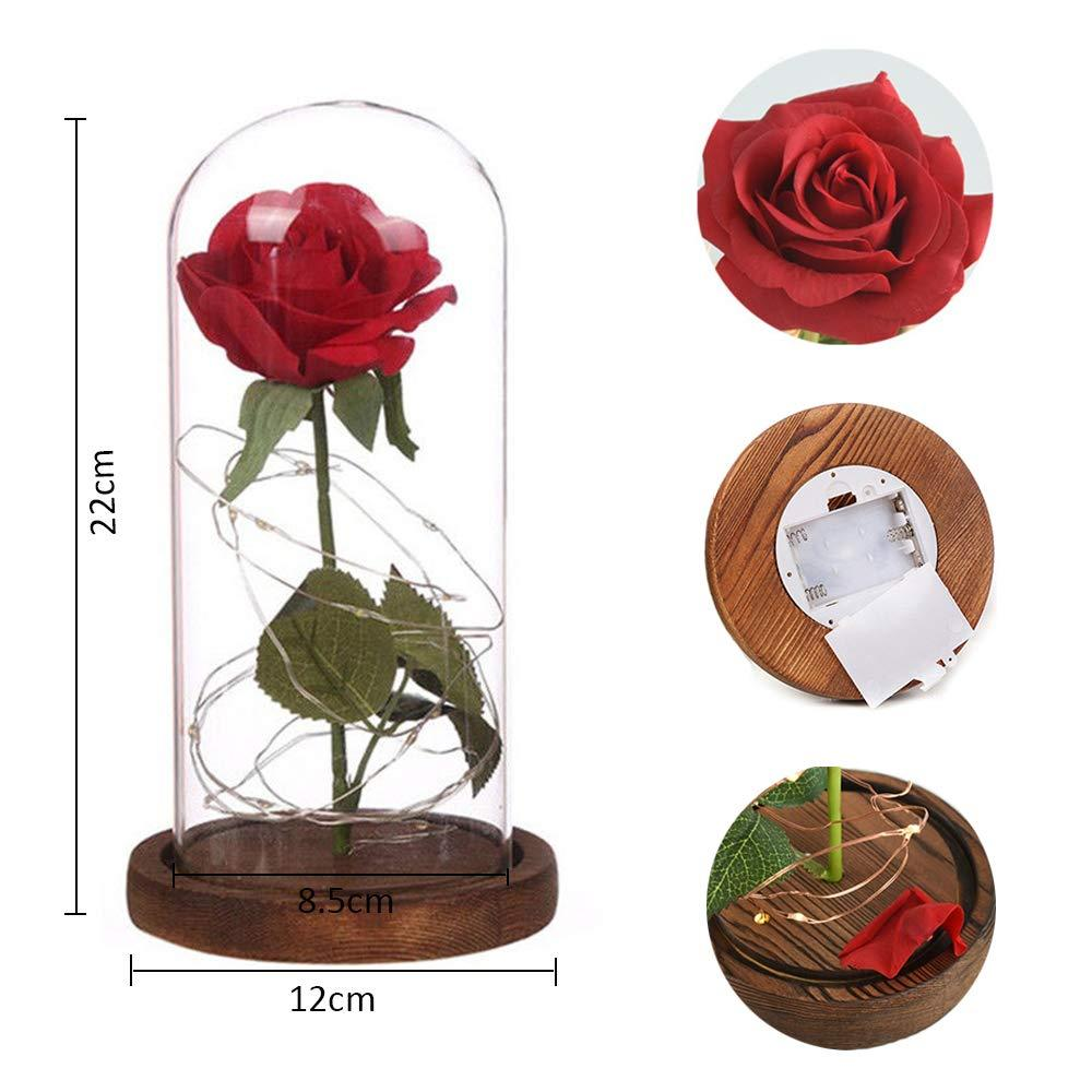 Enchanted Rose Beauty and the Beast Rose Preserved Rose with LED Light Valentine's Day Anniversary Gifts - shopmeko