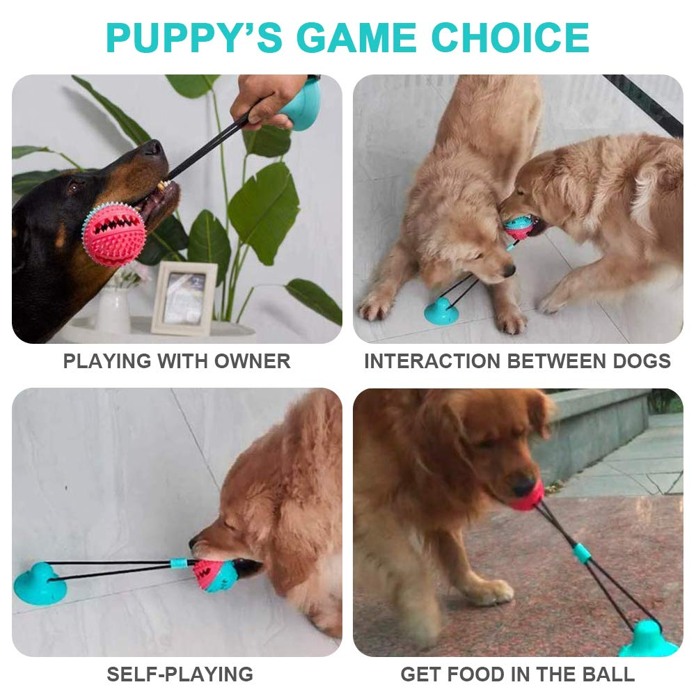 Multifunction Pet Dog Suction Cup Molar Toy Tug Rope Chew Ball Toy