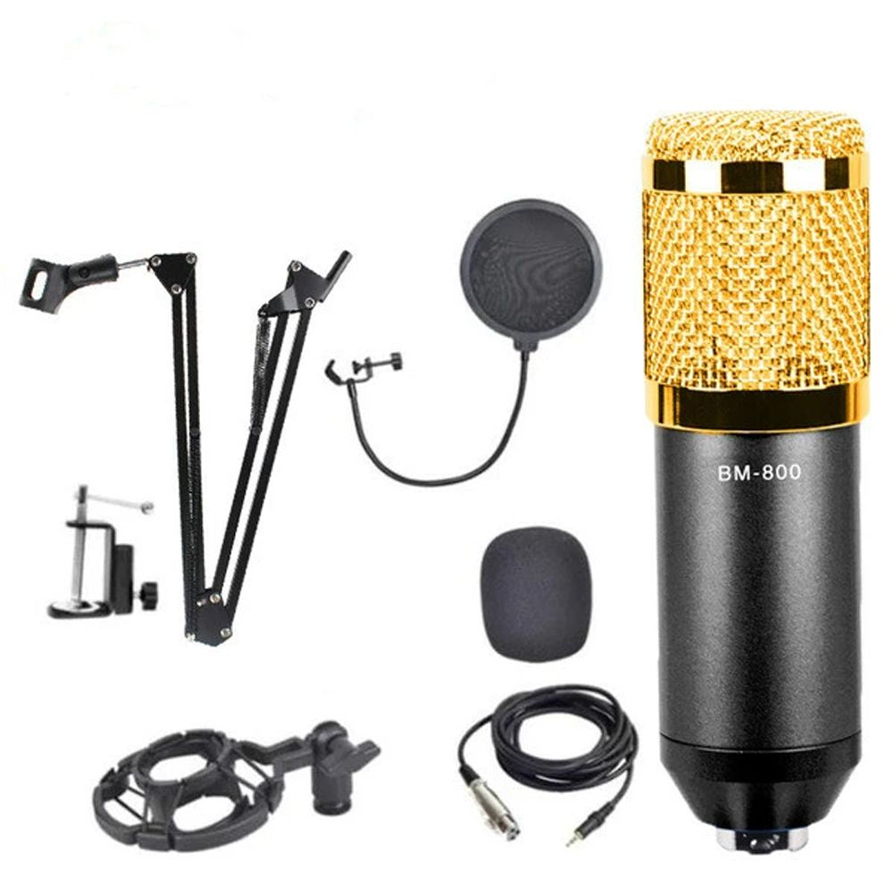 Professional Microphone Vocal Recording Condenser Microphone