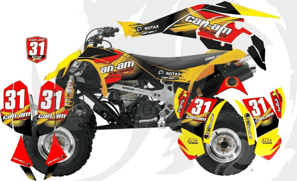 Can-Am DS 450 D21