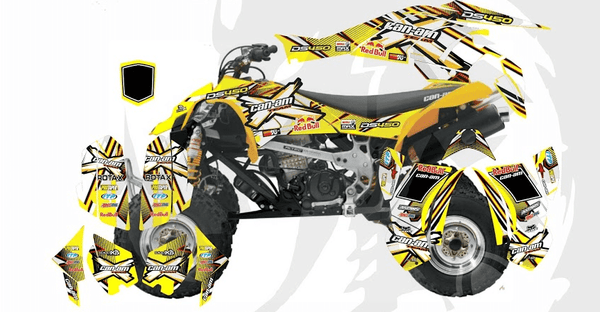 Can-Am DS 450 D6