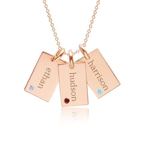 Image of 14k Gold Mini Dog Tag Necklace - 3 Names With Birthstones