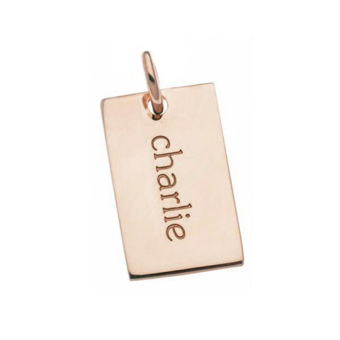 14k Gold Mini Dog Tag