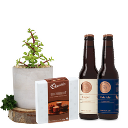 Craft Beer, Money Tree Plant and truffles