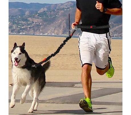 Running Leash