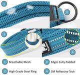 Dog collar (3M reflective line) - Pet Shop Thailand