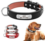 Leather Dog Collar (Customizable!) - Pet Shop Thailand