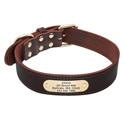 Dog Leather Collar - Pet Shop Thailand