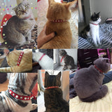 Cat Collar With Bell Dog Collar For Cats Puppy Collars For Cats Kitten Cat Collar Pet Lead Dog Leashes Pet Supplies Pet Products - Pet Shop Thailand