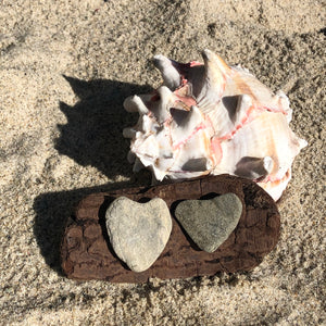 Natural Beach Stone and Driftwood Decoration