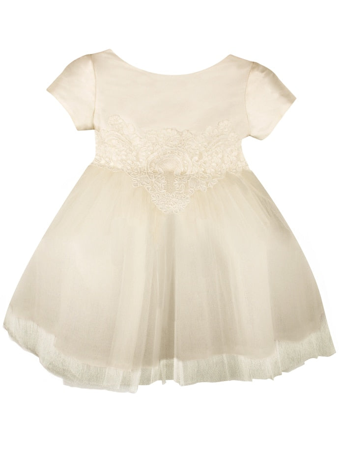 Cap Sleeve Enchanting Tulle Skirt Baby Dress