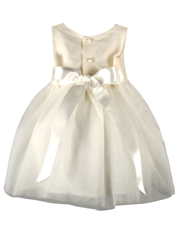Enchanting Tulle Skirt Baby Dress