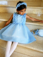 Meringue Organza Ruffle Girls Dress Below Knee Length