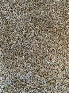 Perennial Rye Grass Seed with Starter Fertiliser per KG