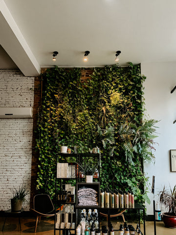 ecofriendly-salon-toronto-eastend-riverside-leslieville-untitledtoronto-greenwall