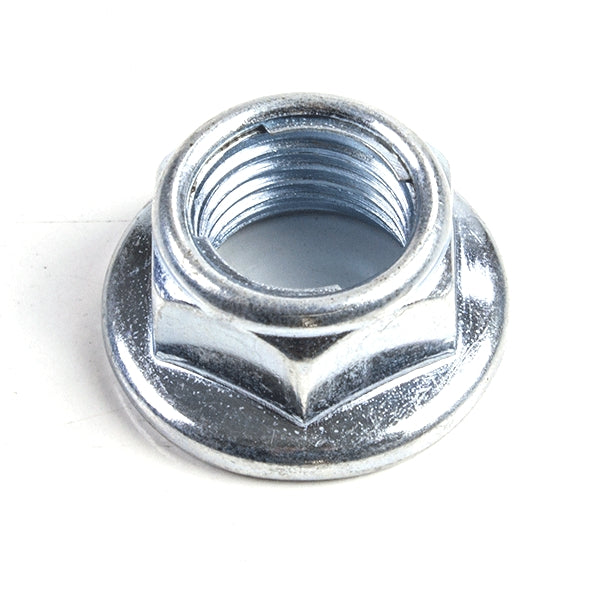 Rear Axle Nut (250 models)