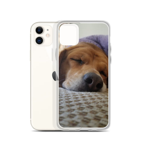 Napping Beagle iPhone Case