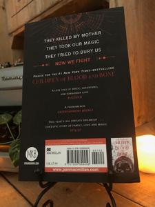 Image of back cover of paperback book Children of Vengeance and Virtue stood in book stand with a candle