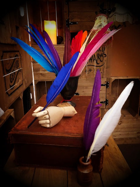 Image of several Biro Quills, coloured feathers with biro pens attached, held in wooden mannequin hands