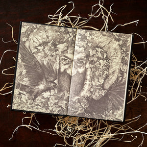 Image shows the book A Pocketful of Crows laid open to display the inside cover illustrations, resting on a pile of wood wool.