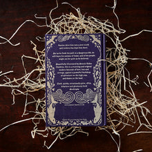Load image into Gallery viewer, Image of the back cover of the hardback book The Blue Salt Road written by Joanne Harris, resting on a pile of wood wool.