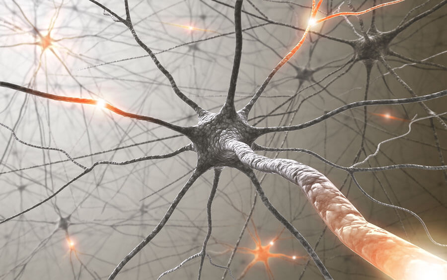 neurotransmitters cell communication The Science of Beauty | How Neurotransmitters and Peptides Work