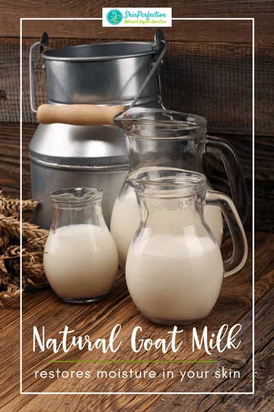 Goat Milk Lotion and Body Products