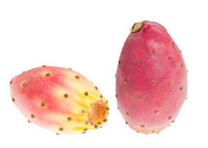 Prickly Pear Cactus Increases Moisture Content