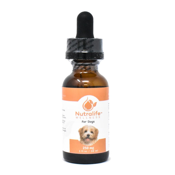 Nutralife 250mg Hemp Oil for Dogs