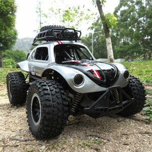 Remote Control RC Cars Toys Independent Suspension Off Road Vehicle - RC Cars Store