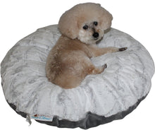 dog sitting on ultrasoft white canine cloud bed