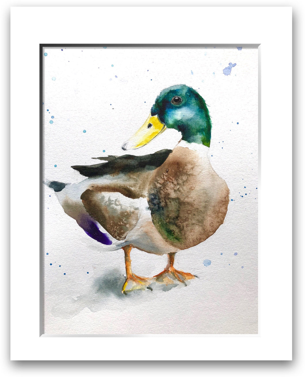 Mallard Duck (signed limited edition print)