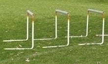 Adjustable Training Hurdle JUNIOR