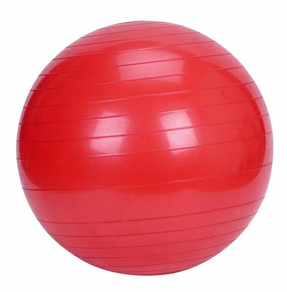 Gym Fitness Ball 55cm Diameter - Core Strength